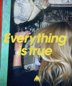AV AV AV - Everything Is True (Vinyl)